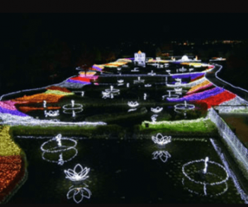 アルプスあづみの公園クリスマスイルミネーション