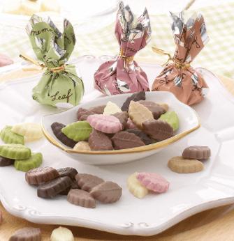 モンロワールチョコレートハウスリーフメモリー