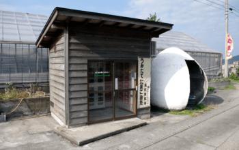 卵が買える自動販売機