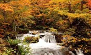 奥入瀬渓流紅葉おすすめ