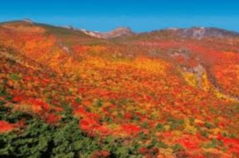 安達太良山紅葉