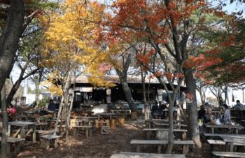 小仏城山茶屋紅葉