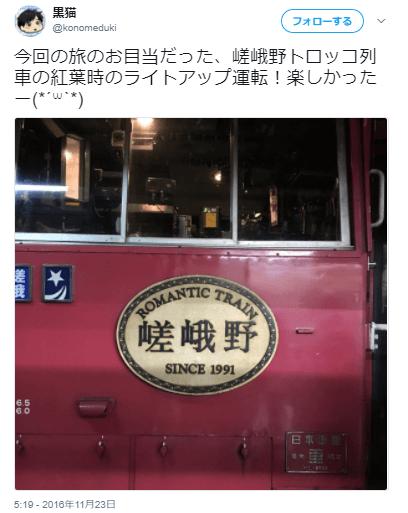 嵯峨野紅葉トロッコ口コミ