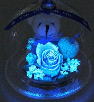 敬老の日光るバラ