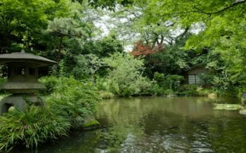 日本庭園を散歩できる