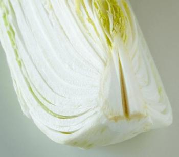 根に切込みを入れた白菜2