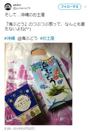 沖縄海ぶどうお土産