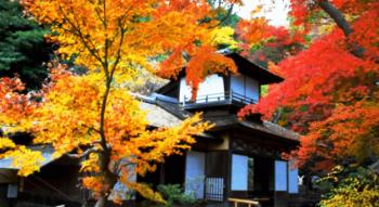 紅葉関東おすすめの穴場2017は千葉県にある養老渓谷です。