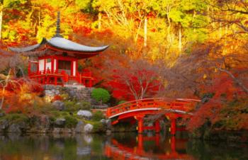 紅葉醍醐寺きれい