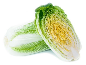 縦カットされた白菜
