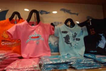 美ら海水族館お土産限定Tシャツ