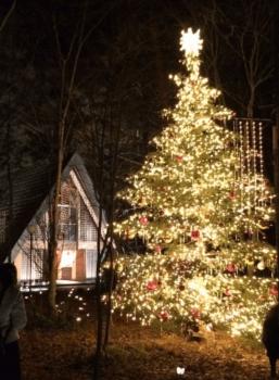 軽井沢高原教会のクリスマスツリー