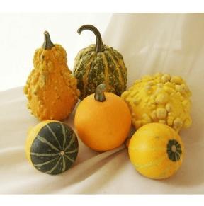 ハロウィンかぼちゃランタン作り方飾り種類くり抜き方25