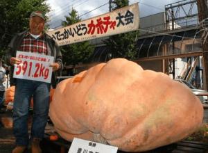 ハロウィンかぼちゃランタン作り方飾り種類くり抜き方8