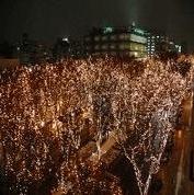 仙台光のページェント2016ホテル見えるホテルプレステージⅡ