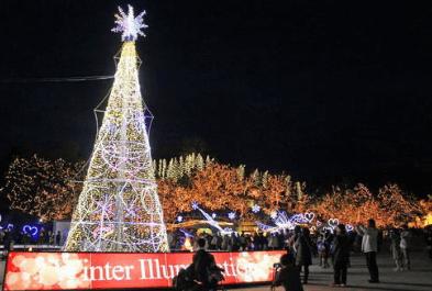 備北丘陵公園イルミネーション2016花火中の広場