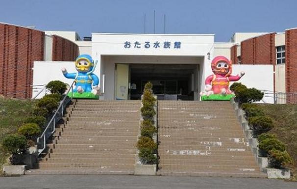 北海道おすすめ水族館おたる水族館
