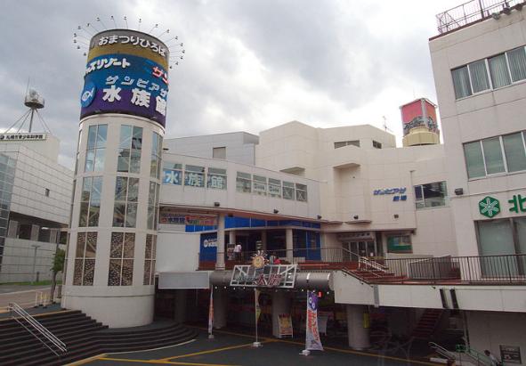 北海道おすすめ水族館サンピアザ水族館