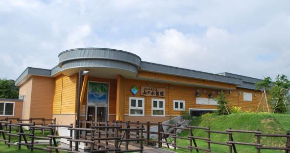北海道おすすめ水族館山の水族館