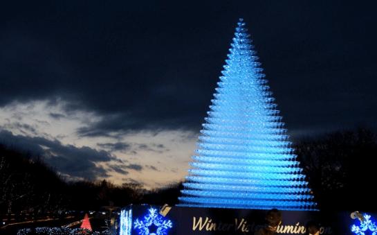 昭和記念公園イルミネーション2016点灯式2