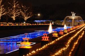 昭和記念公園イルミネーション2016開催期間2