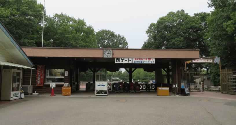 東武動物公園イルミネーション2016駐車場西ゲート