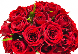 結婚記念日バラの花束