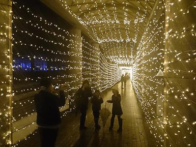 長岡イルミネーション2016丘陵公園光のトンネル