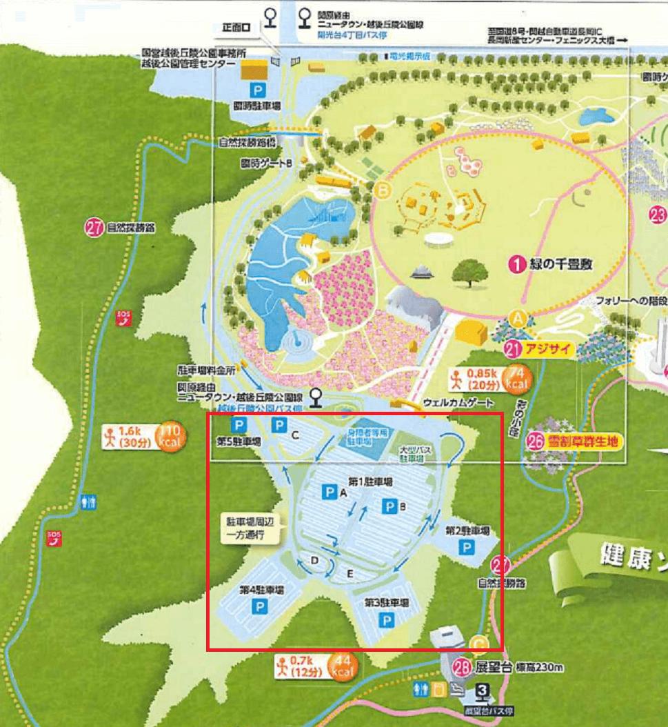 長岡イルミネーション2016丘陵公園駐車場