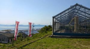 広島県イチゴ狩りランキング2017口コミ沖美ベジタ