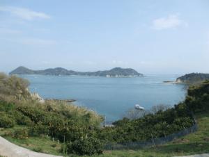 広島県イチゴ狩りランキング2017恵みの丘蒲刈3