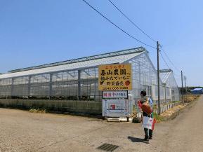 神奈川いちご狩り人気ランキング2017いちごはうす嘉山農園