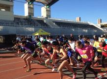 マラソン大会東京2017初心者10km大井ふ頭 4時間耐久リレーマラソン