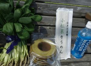 マラソン大会東京2017初心者10km小松菜マラソン