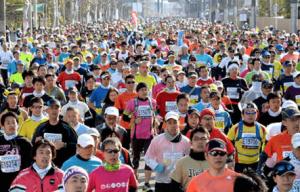 京都マラソン2017日程コース