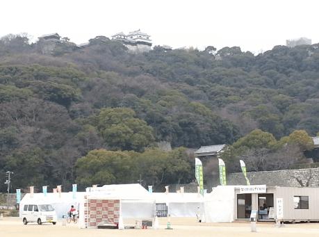 愛媛マラソンコース2017年ゴール城山公園