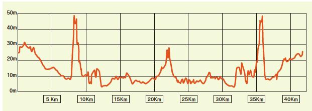 愛媛マラソンコース2017年関門時間高低差