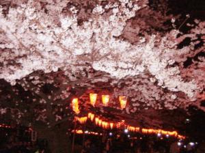 上野恩賜公園桜ライトアップ