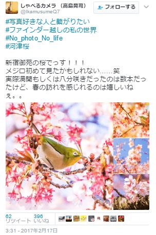 新宿御苑口コミ