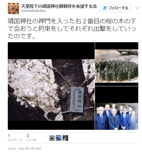 靖国神社口コミ桜