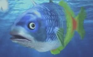 謎の魚第一形態
