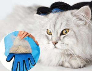 グルーミンググローブ猫