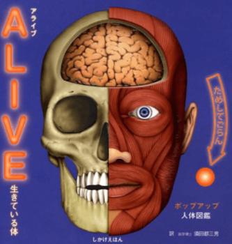 ALIVE生きている体おすすめ